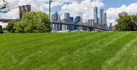 The renovated Main street section of Brooklyn Bridge Park