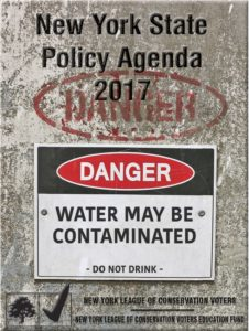 NYS policy agenda 2017 cover