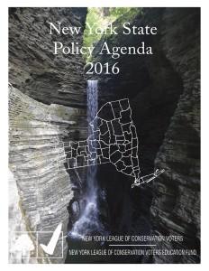 Statewide Agenda 2016.FINAL